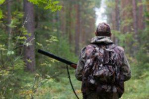 Сроки осенне зимней охоты калуга 2019 2019