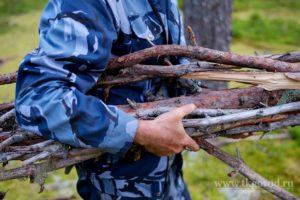 Закон разрешено ли собирать дрова в лесу
