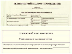 Технический план и технический паспорт в чем разница