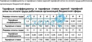Как правильно оформить перевод на 23 тарифной ставки