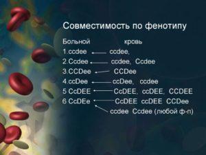 Определение фенотипа крови по системам резус и келл значение