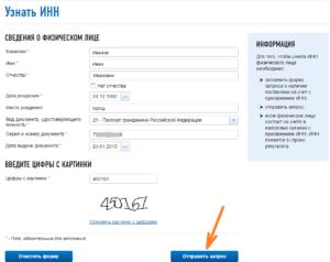 Проверить физическое лицо по паспорту на сайте налоговой
