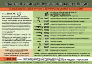 Хронение и применение холодного оружия статья ук рф