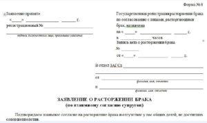 Образец заполнения заявления о расторжении брака в загс форма 8