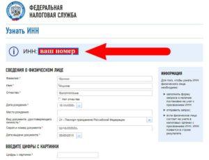 Инн по паспорту гражданина украины узнать официальный сайт